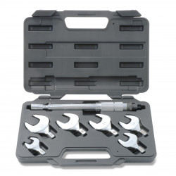 Torque wrenches kit in carrying case from 17 to 29 mm